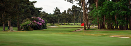 Overview of golf course named Ferndown Golf Club