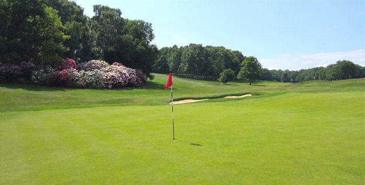 Ashridge golf club cover picture