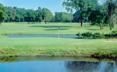 Hugo golf club cover picture
