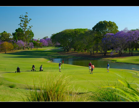 Indooroopilly golf club cover picture