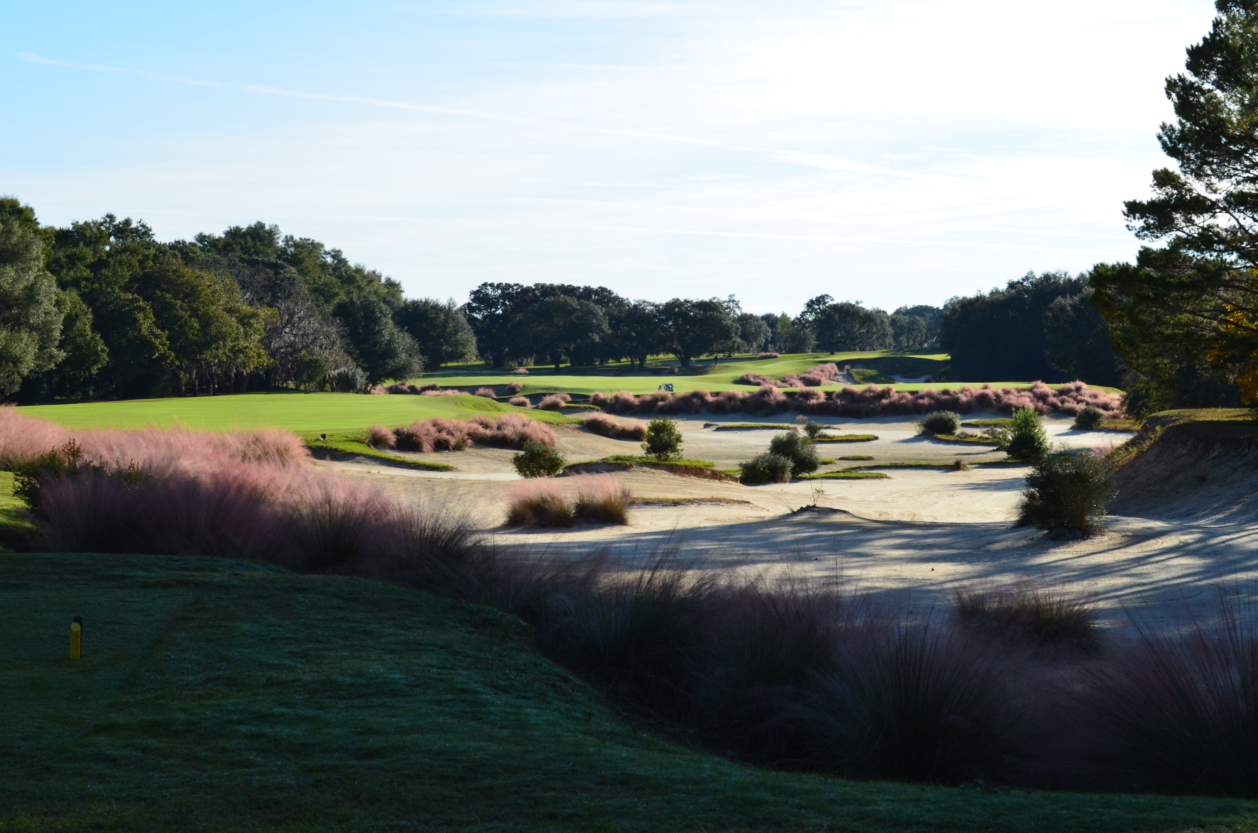 Overview of golf course named World Woods Golf Club - Pine Barrens