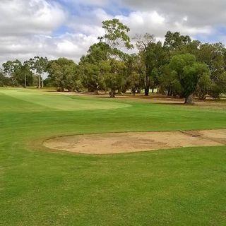 Armadale public golf course cover picture