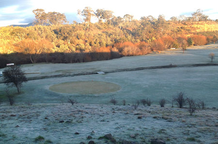 Tea Tree Golf Club Cover Picture
