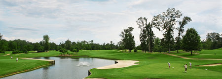The woods golf course at kingsmill cover picture