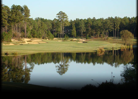 Forest Creek Golf Club Cover Picture