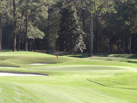 Overview of golf course named Ogeechee Golf Club at The Ford Plantation