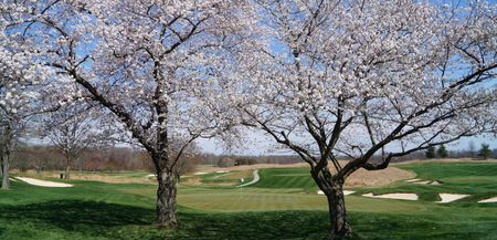 Four Streams Golf Club Cover Picture