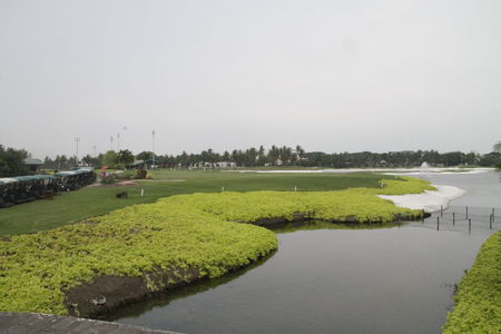 Damai Indah Golf (Pantai Indah Kapuk) Cover Picture