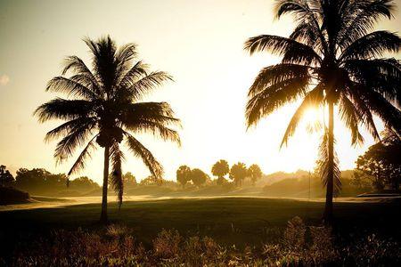 Polo Trace Golf Club Cover Picture