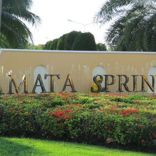 Amata spring country club cover picture
