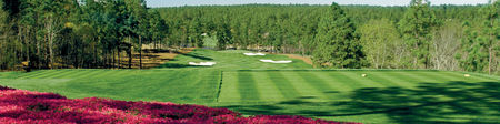 Sage Valley Golf Club Cover Picture