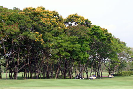 Overview of golf course named Navatanee Golf Course