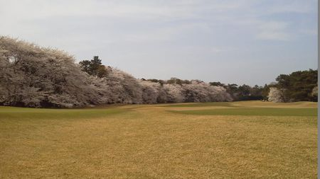 Takanodai Country Club Cover Picture
