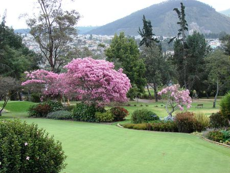 Overview of golf course named Quito Golf Club