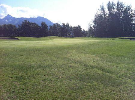 Overview of golf course named Palmer Golf Course