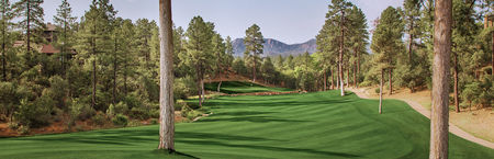 The Golf Club at Chaparral Pines Cover Picture