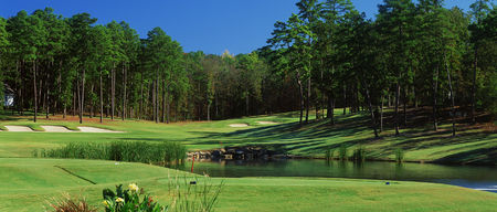 Diamante golf course cover picture