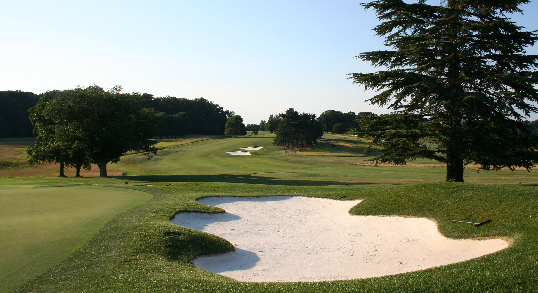 Bidermann golf club cover picture