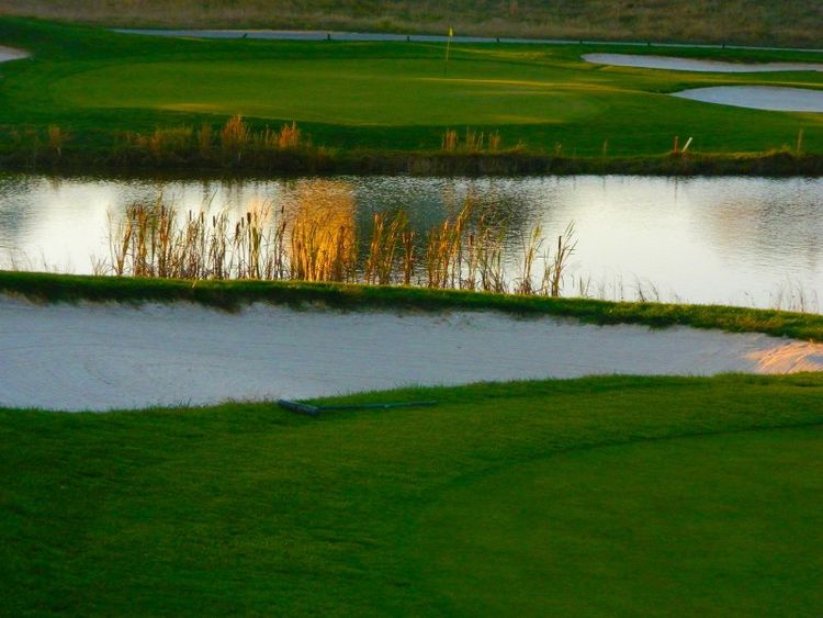 Back creek golf club cover picture