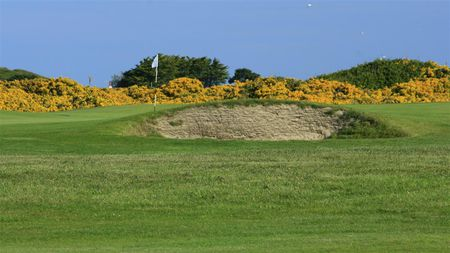 Royal Guernsey Golf Club Cover Picture