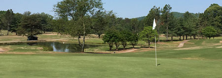 Overview of golf course named Bellaire Golf Course