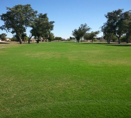 Cocopah Rio Colorado Golf Course Cover Picture