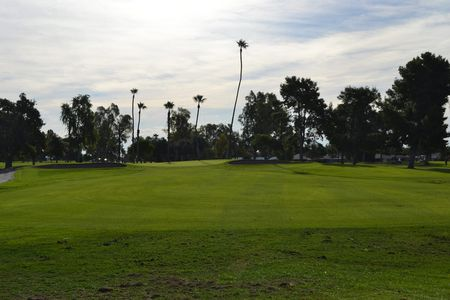 Palmbrook Country Club Cover Picture