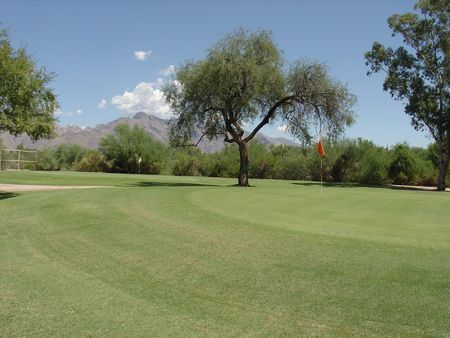 Quail Canyon Golf Course Cover Picture