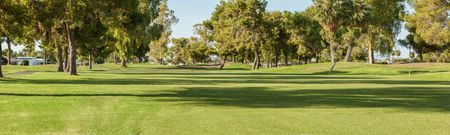Sun City South Golf Course Cover Picture