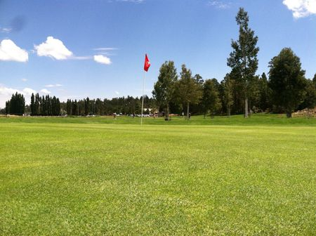 Timberline short nine cover picture