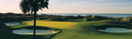 Overview of golf course named Turtle Point at Kiawah Island Resort