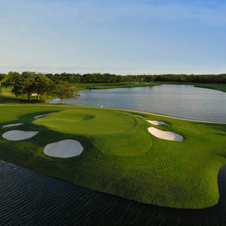Trump national doral miami the red tiger cover picture
