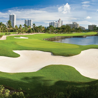 Turnberry isle resort and club the miller course cover picture