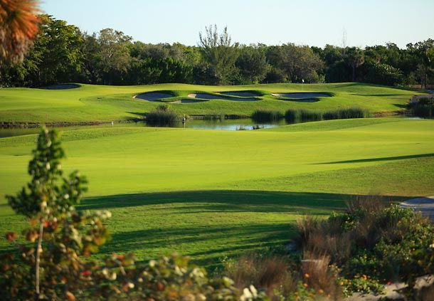 Hammock bay golf course picture