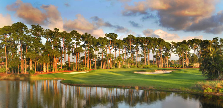 Pga national golf club the champion cover picture