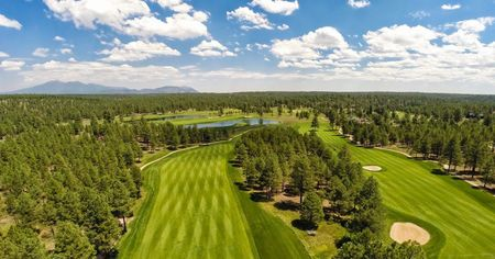 Forest Highlands Golf Club - The Meadow Cover Picture