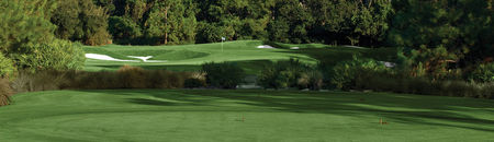 Overview of golf course named Golden Bear Club at Keene's Pointe, The
