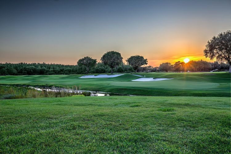 Tpc tampa bay cover picture