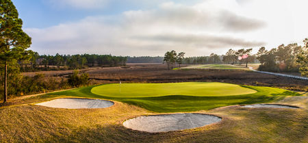 Shell Landing Golf Club Cover Picture