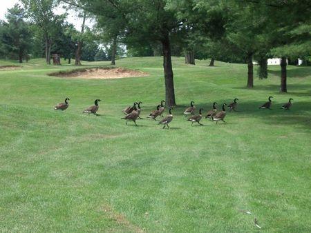 Lancaster Host Golf Resort Cover