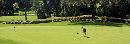 Overview of golf course named Innisbrook Resort and Golf Club - The Island