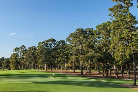 Bluejack national cover picture