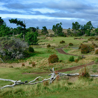 Bandon trails at bandon dunes resort cover picture