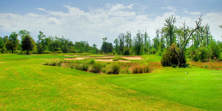 Barefoot bay golf and recreation park cover picture