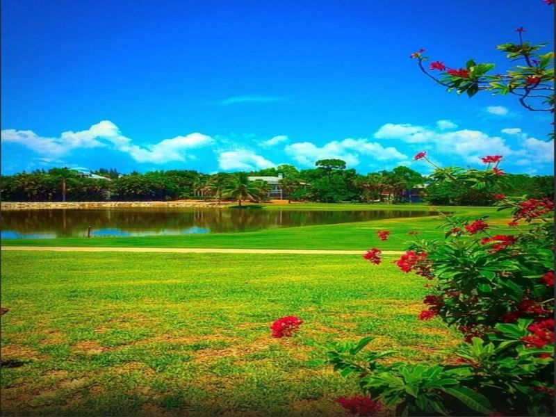 Alden pines country club cover picture