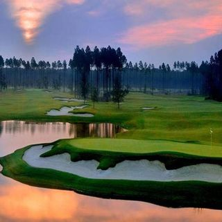 Amelia national golf and country club cover picture