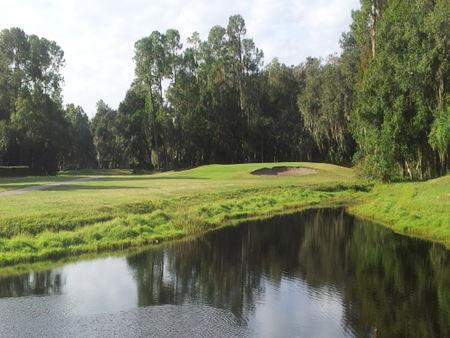 Brooker Creek Golf Club Cover