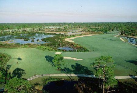 Eagle Marsh Golf Club Cover