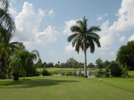 Hibiscus Golf Club Cover Picture