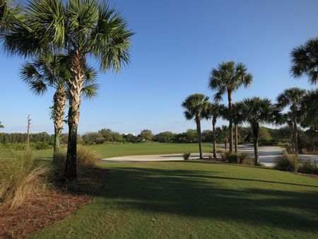 Raptor bay golf club cover picture